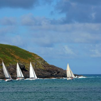 Yacht Race at Muttonbird Island